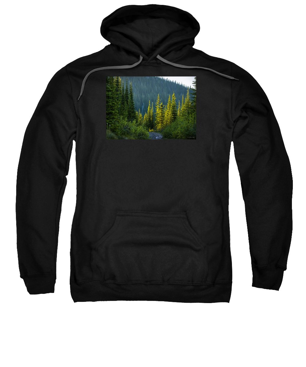 Landscape Sweatshirt featuring the photograph Set Down Your Coffee And Follow Me - 140702a-098 by Albert Seger