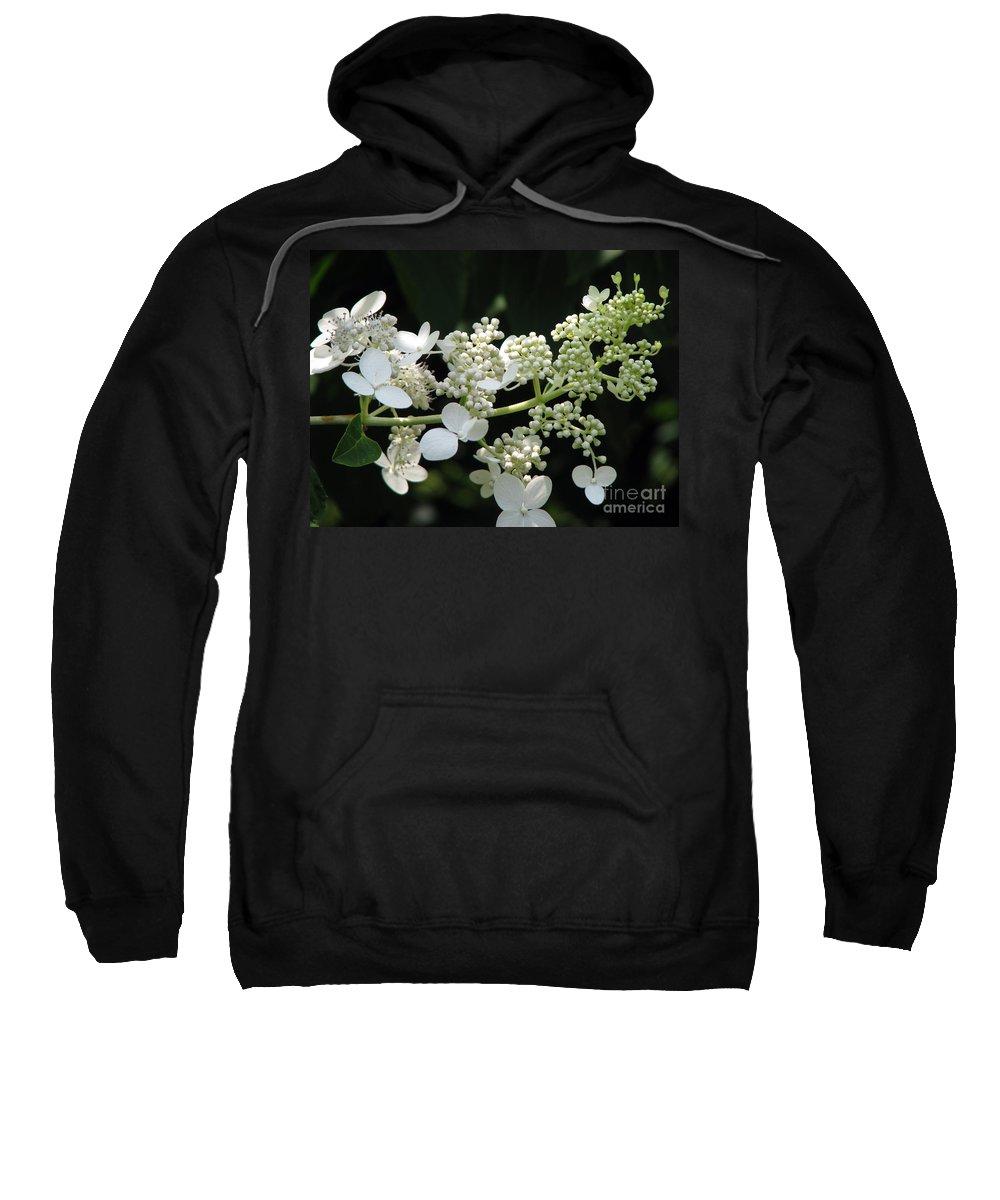 Hydrangea Sweatshirt featuring the photograph Simply by Amanda Barcon