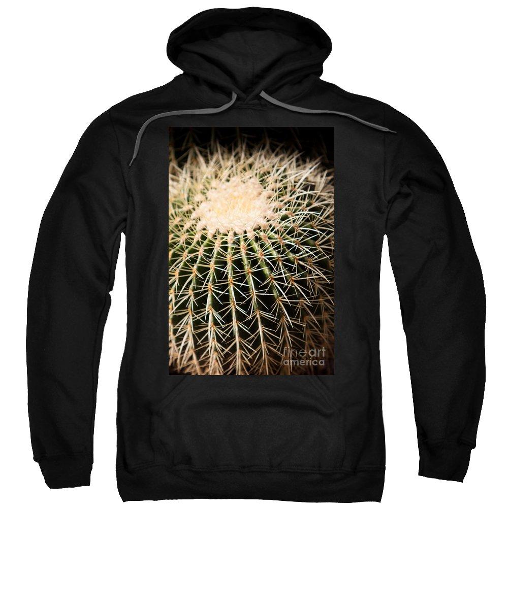 Botanical Sweatshirt featuring the photograph Single Cactus Ball by John Wadleigh