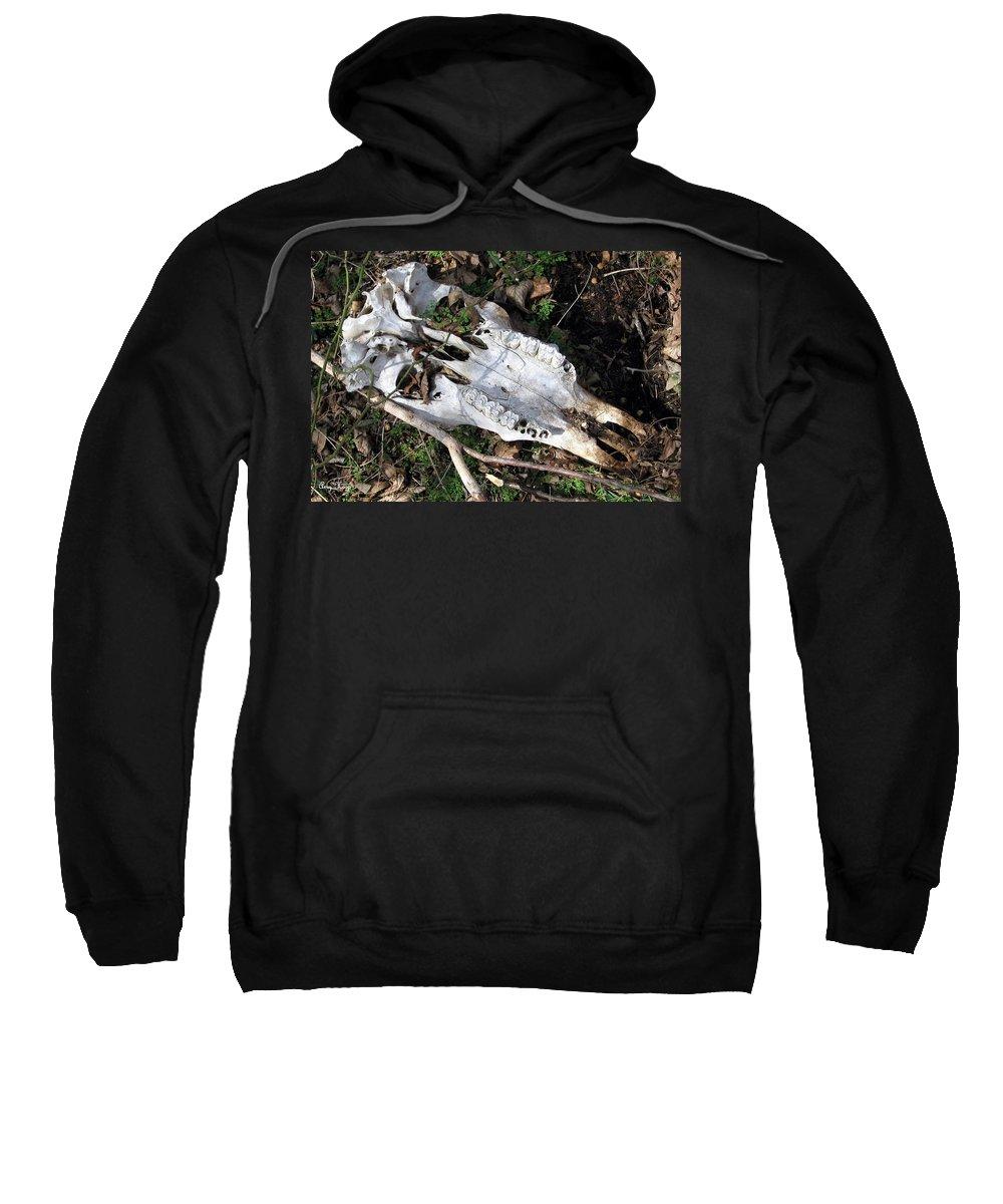 Skull Sweatshirt featuring the photograph Skull by Amy Hosp