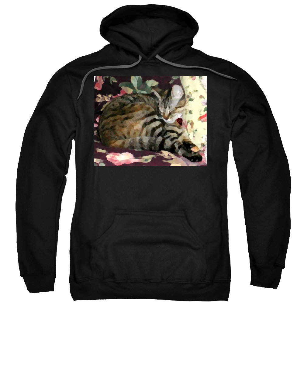 Tabby Cat Sweatshirt featuring the photograph Sleeping Tabby by Jeanne A Martin