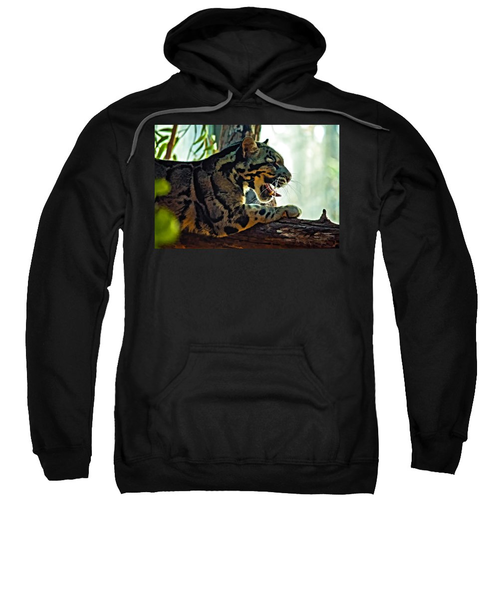 Clouded Leopard Sweatshirt featuring the photograph Sleepy Girl Paint Version by Steve Harrington