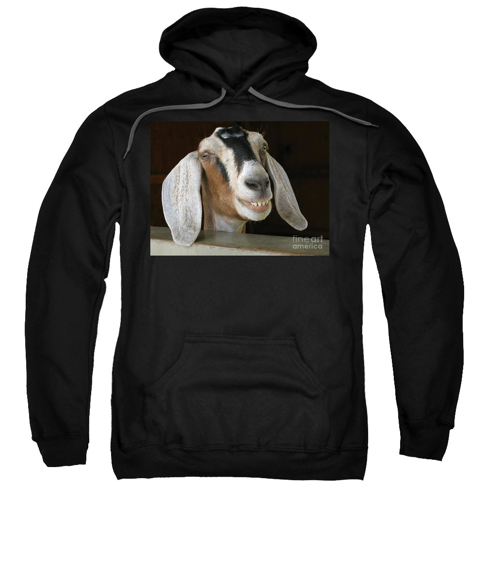 Goat Sweatshirt featuring the photograph Smile Pretty by Ann Horn