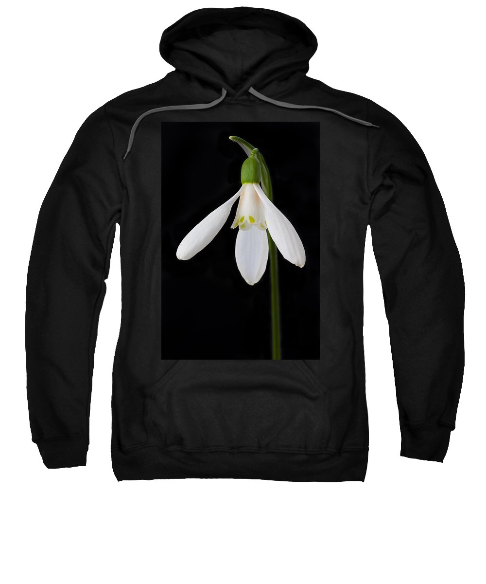 Snowdrop Sweatshirt featuring the photograph Snowdrop by Chris Smith