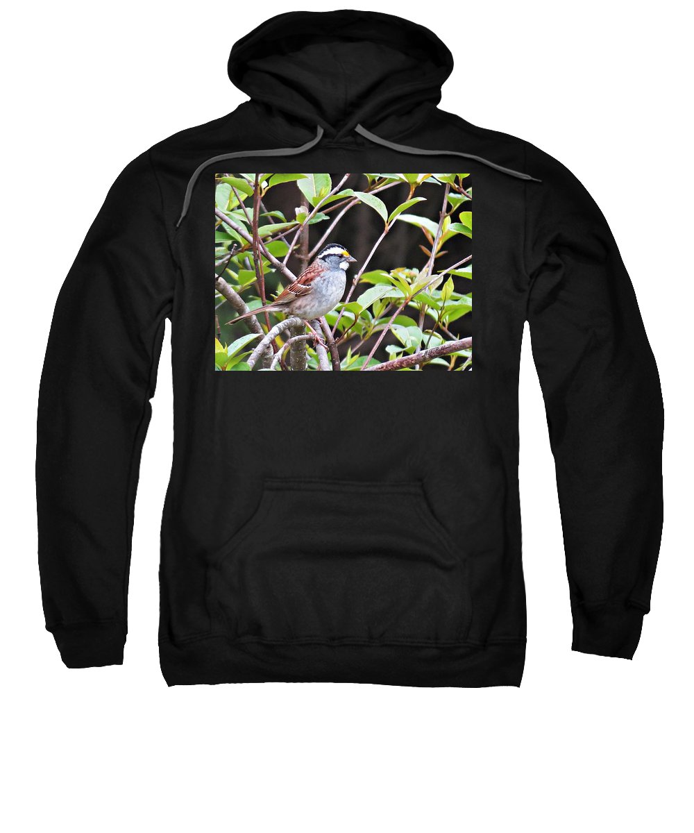 Sparrow Sweatshirt featuring the photograph Sparrow by MTBobbins Photography