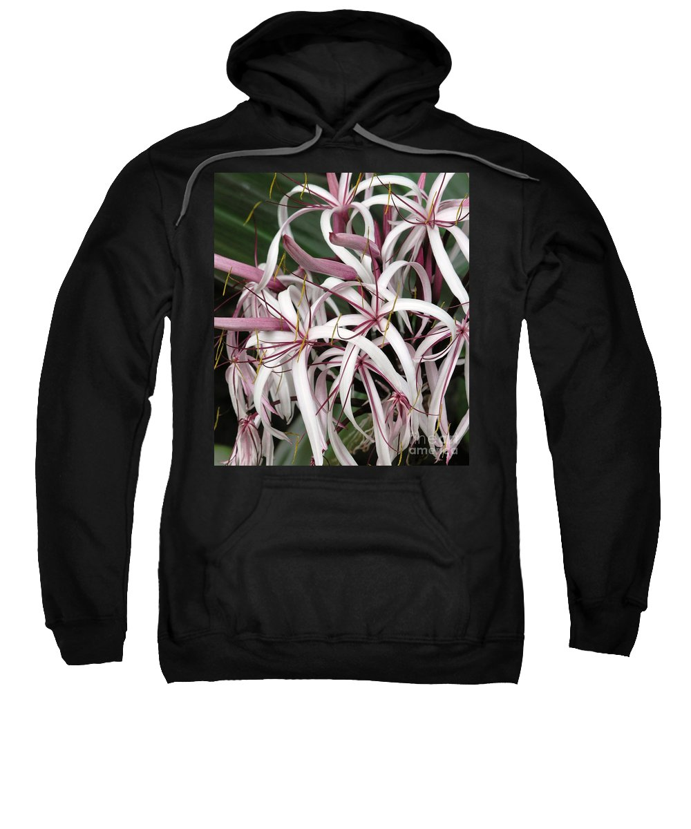 Lily Sweatshirt featuring the photograph Spider Lily by Mary Deal
