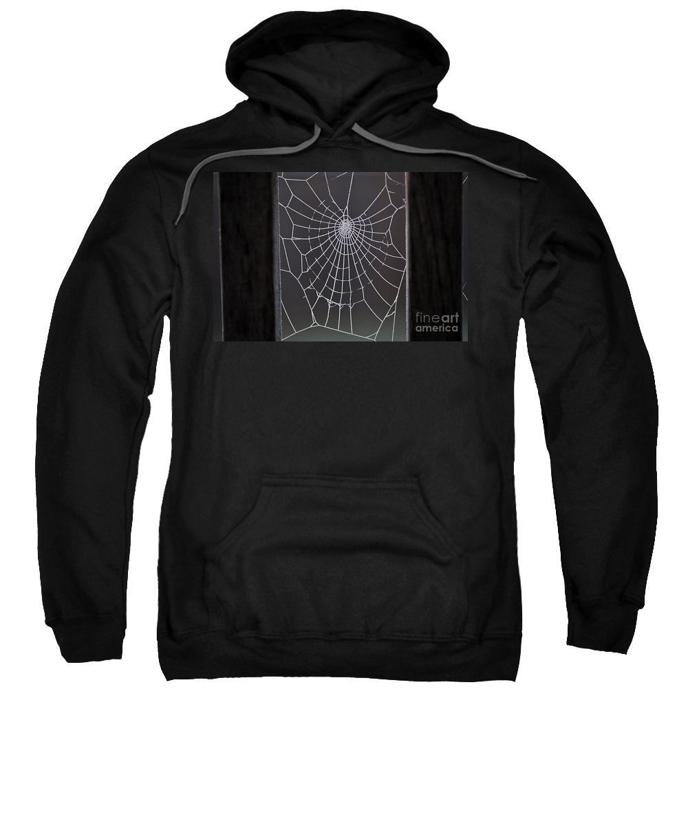 Aranae Sweatshirt featuring the photograph Spider Web With Frost by Jim Corwin
