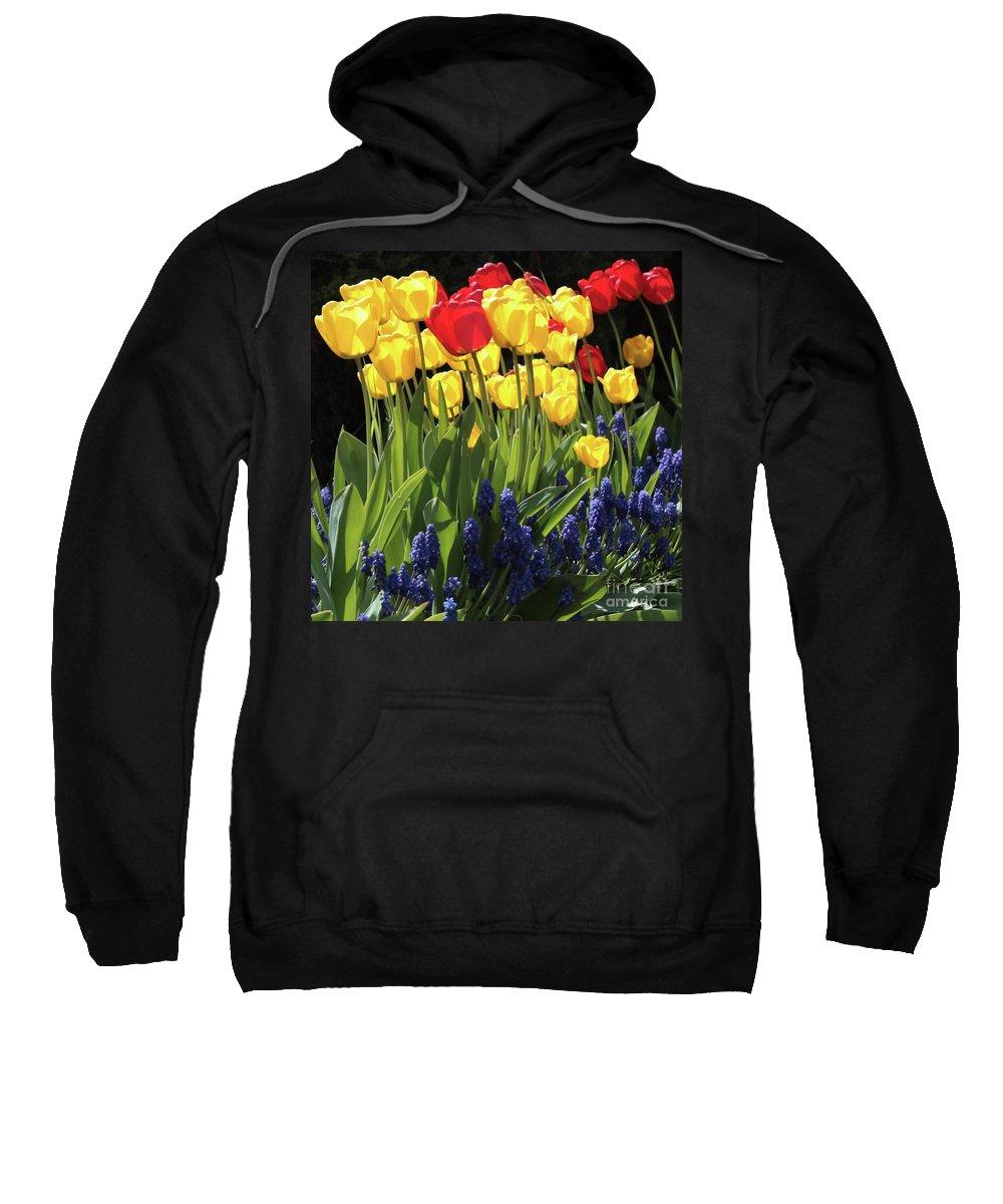 Spring Garden Sweatshirt featuring the photograph Spring Garden Sunshine Square by Carol Groenen