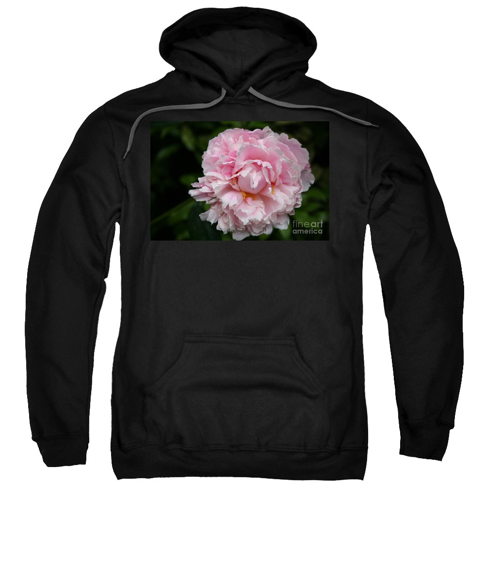 Peony Sweatshirt featuring the photograph Spring In Pink by Christiane Schulze Art And Photography