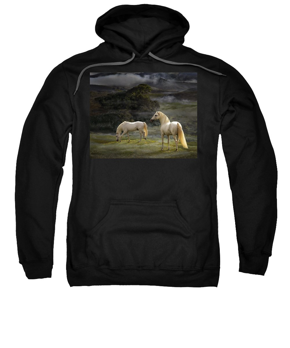 White Stallions Sweatshirt featuring the photograph Stallions Of The Gods by Melinda Hughes-Berland
