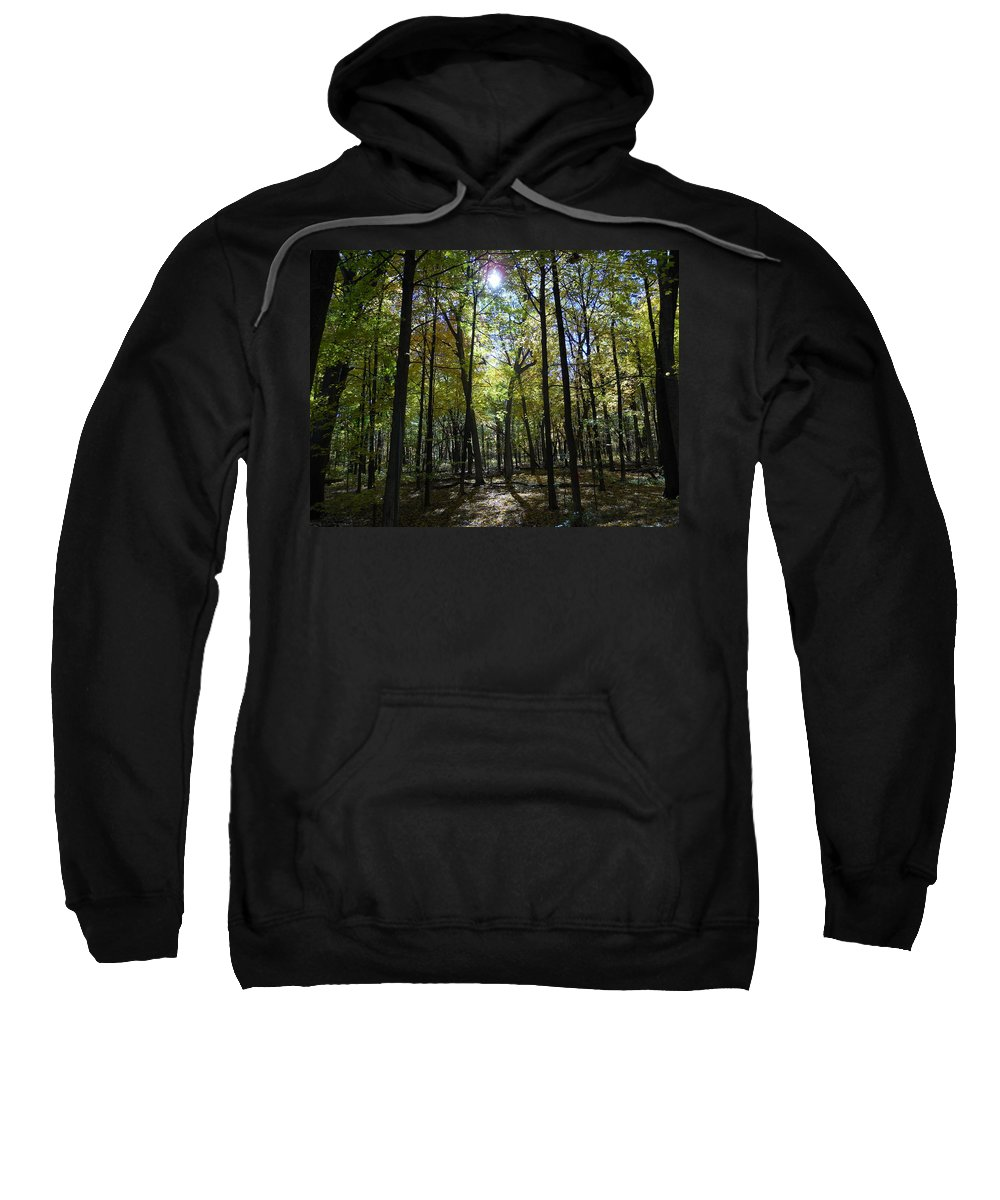 Trees Sweatshirt featuring the photograph Stick Men by Coleen Harty