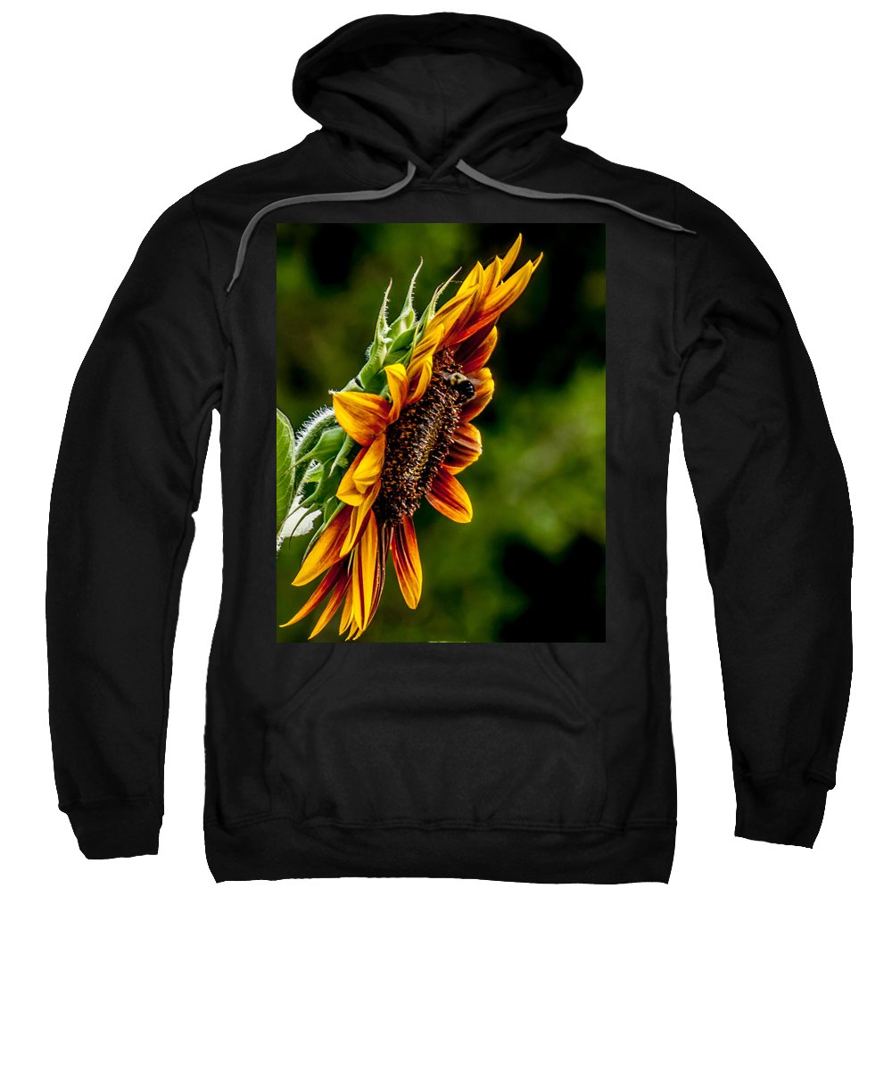Agriculture Sweatshirt featuring the photograph Summer Beauty by Sharon Meyer