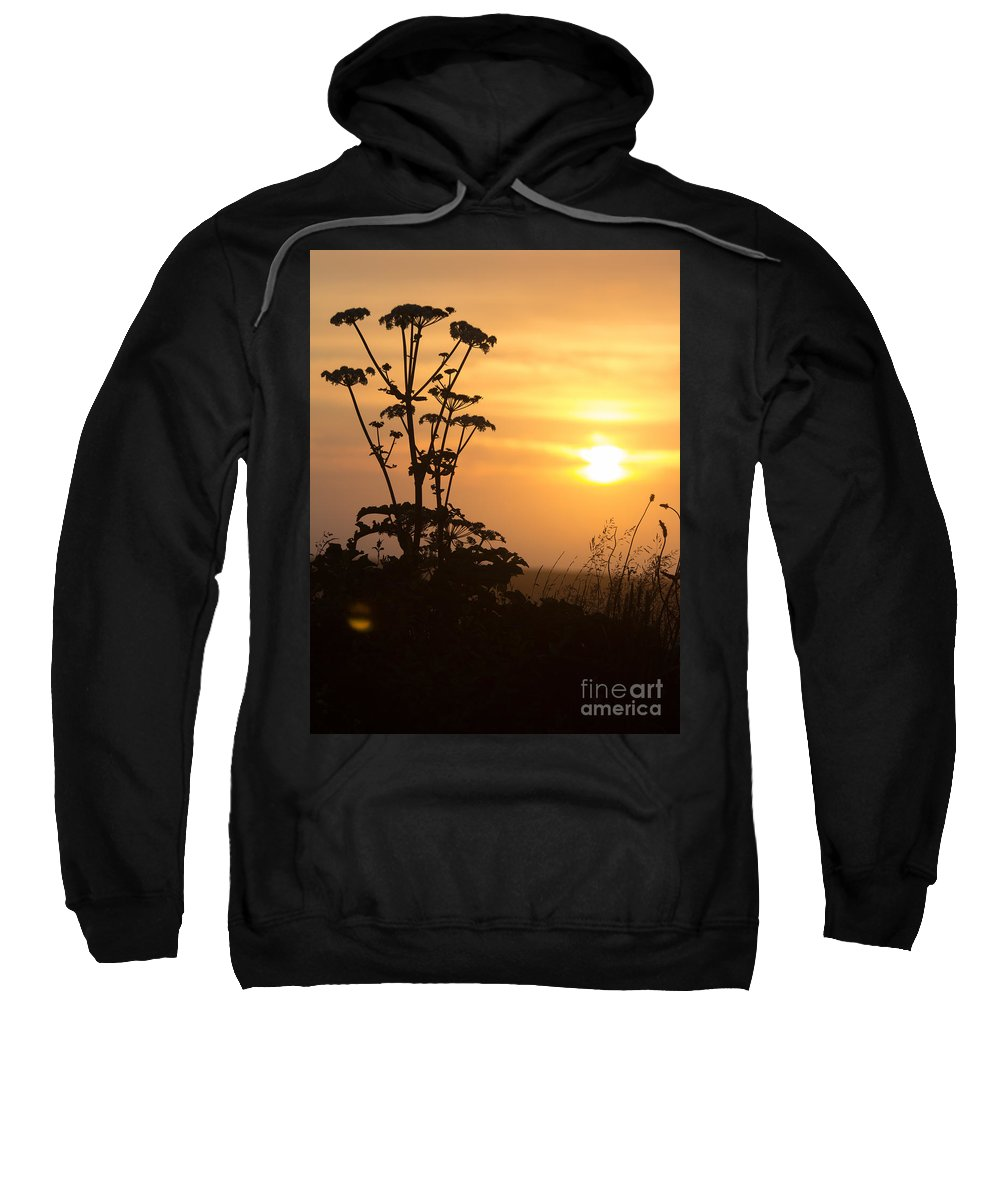Sunset Sweatshirt featuring the photograph Summer Evening by Kathryn Bell
