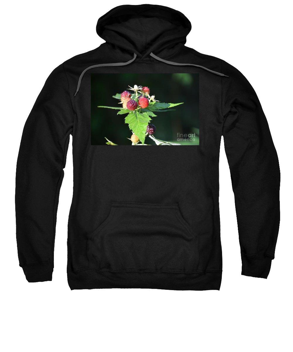 Raspberry Sweatshirt featuring the photograph Summertime Goodness by Randy J Heath