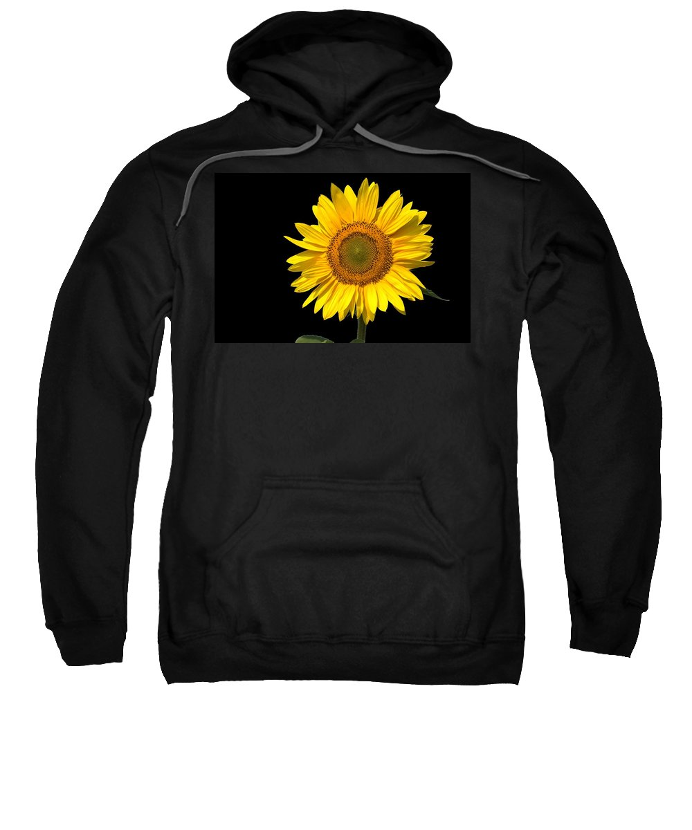Flora Sweatshirt featuring the photograph Sunflower 2 by Bonfire Photography