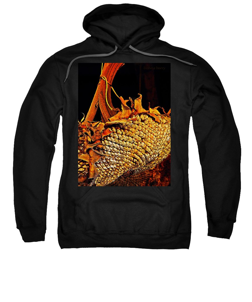 Nature Sweatshirt featuring the photograph Sunflower Seeds In Oils by Chris Berry