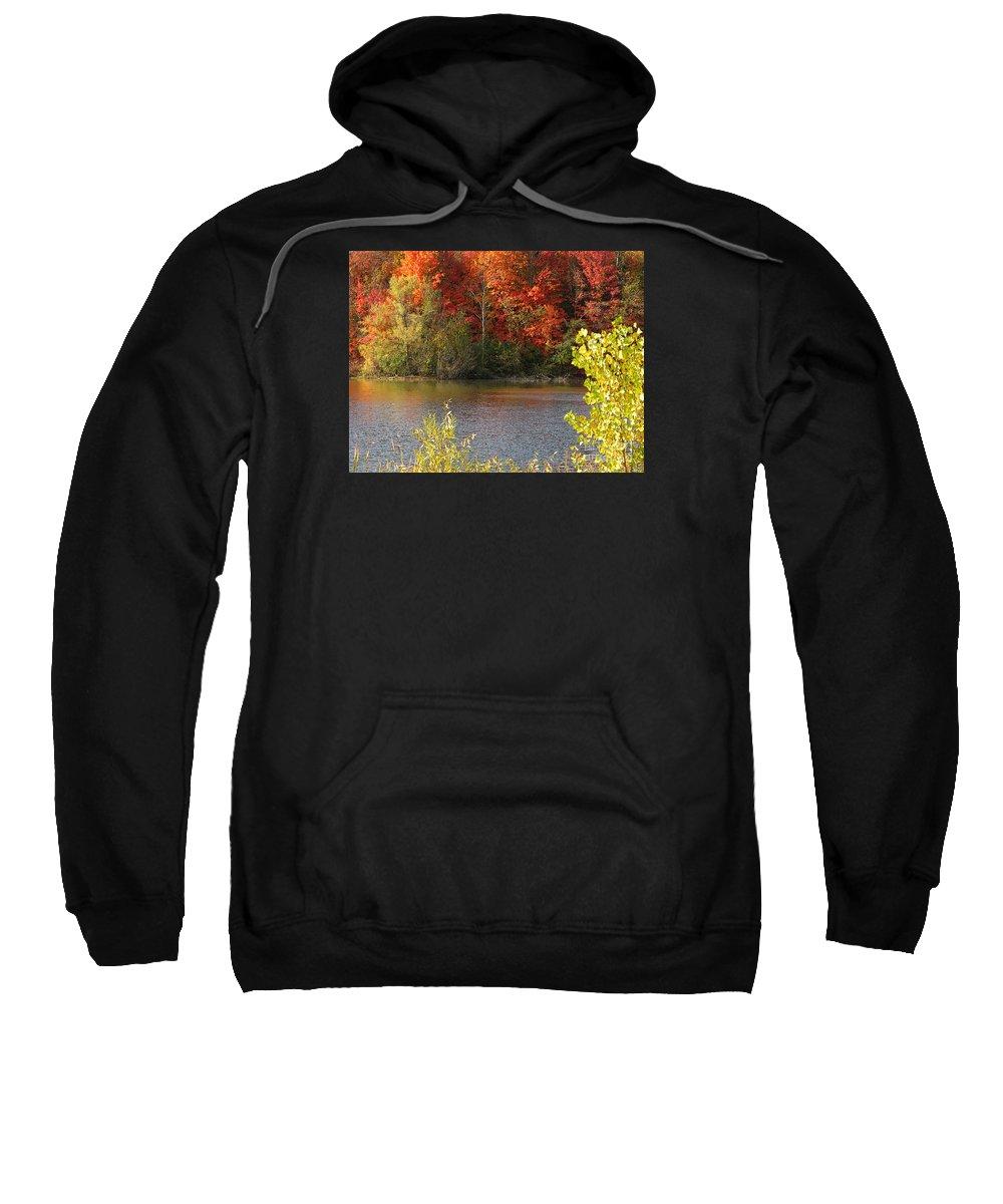 Autumn Sweatshirt featuring the photograph Sunlit Autumn by Ann Horn