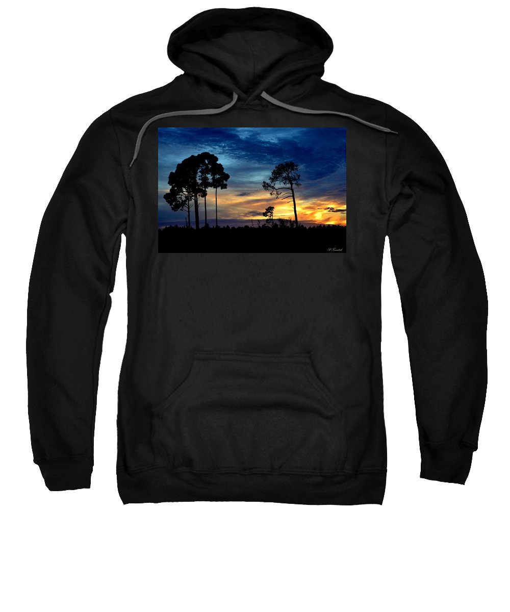 Blue Sweatshirt featuring the photograph Sunset Behind The Trees by Patricia Twardzik