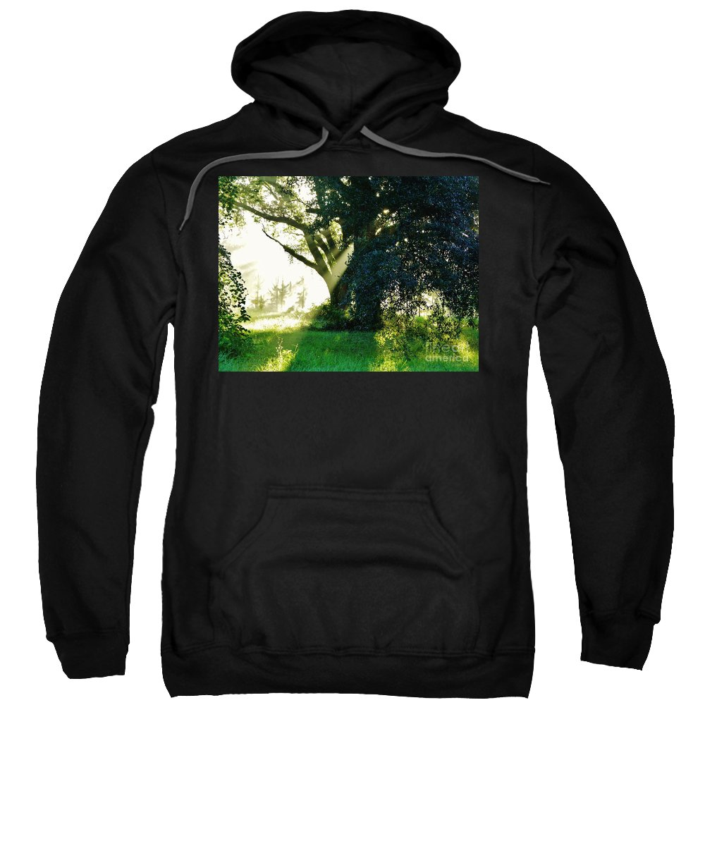 Sunshine Sweatshirt featuring the photograph Sunshine And Sunbeams by D Hackett