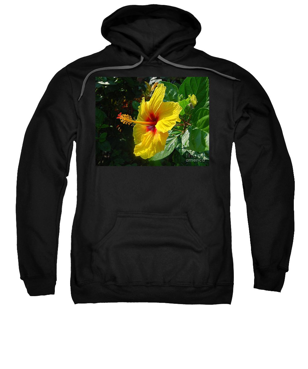 Hibiscus Sweatshirt featuring the photograph Sunshine Yellow Hibiscus With Red Throat by Catherine Sherman