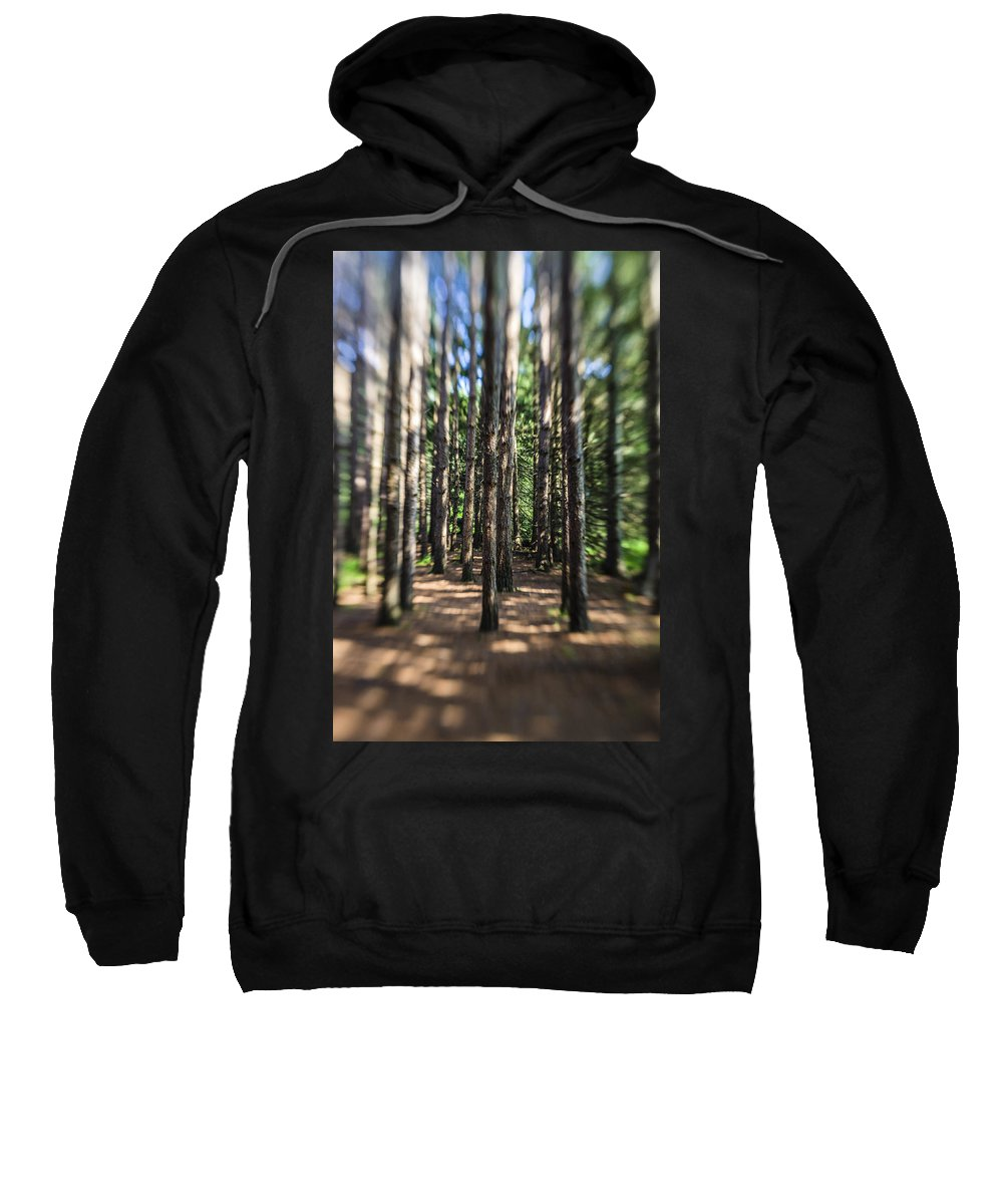 Water Sweatshirt featuring the photograph Surreal Forest by Alex Potemkin