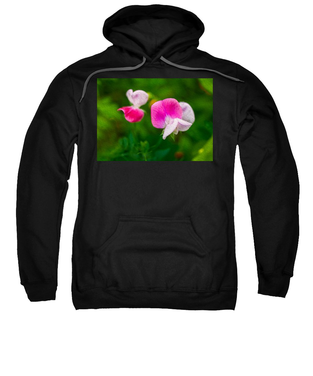 North Cascades Sweatshirt featuring the painting Sweet Pea Blossoms by Omaste Witkowski