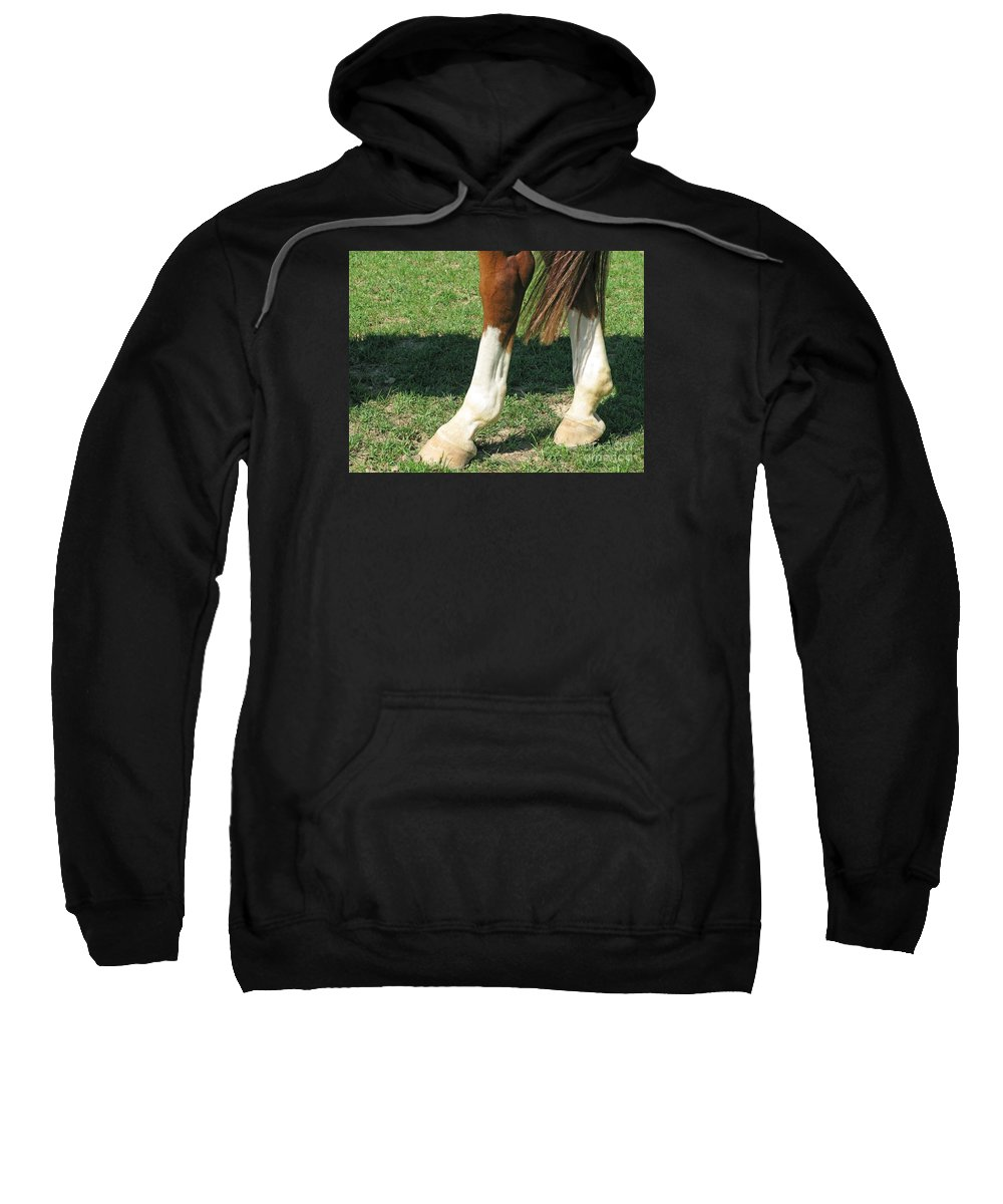 Horse Sweatshirt featuring the photograph Tail End by Ann Horn