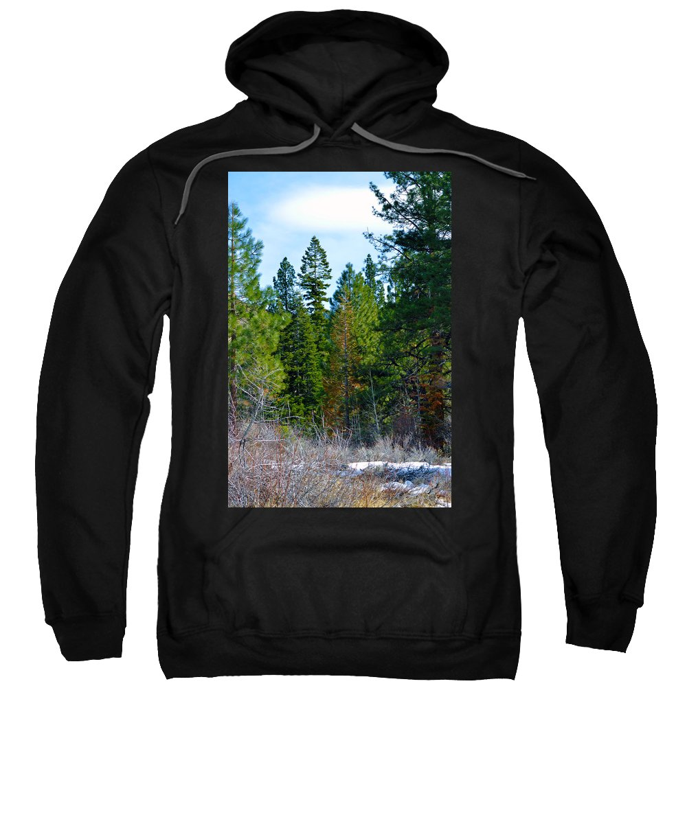 Nevada Sweatshirt featuring the photograph Tall by Brent Dolliver
