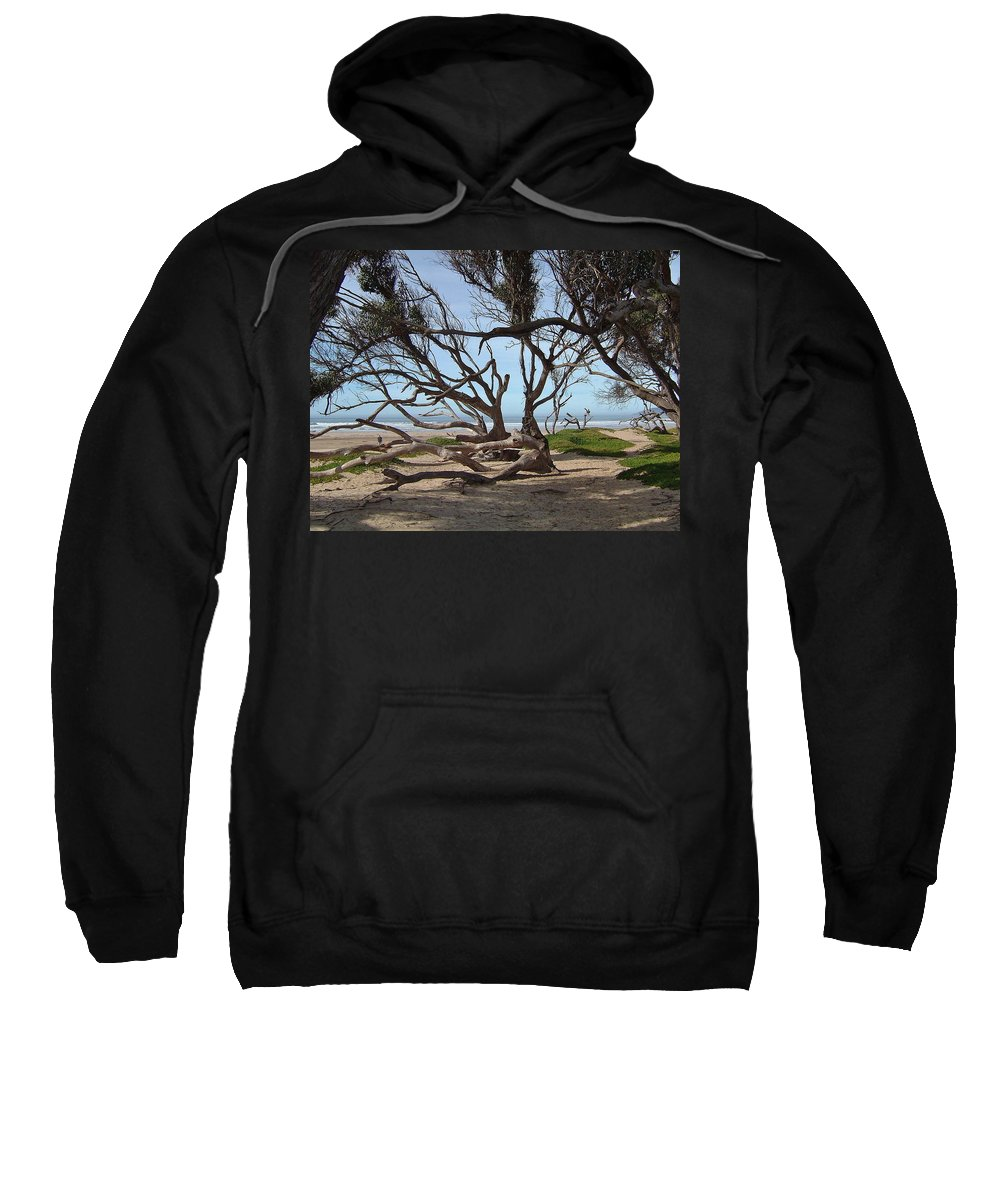 Ocean Sweatshirt featuring the photograph Tangle Of California Trees by Susan Wyman