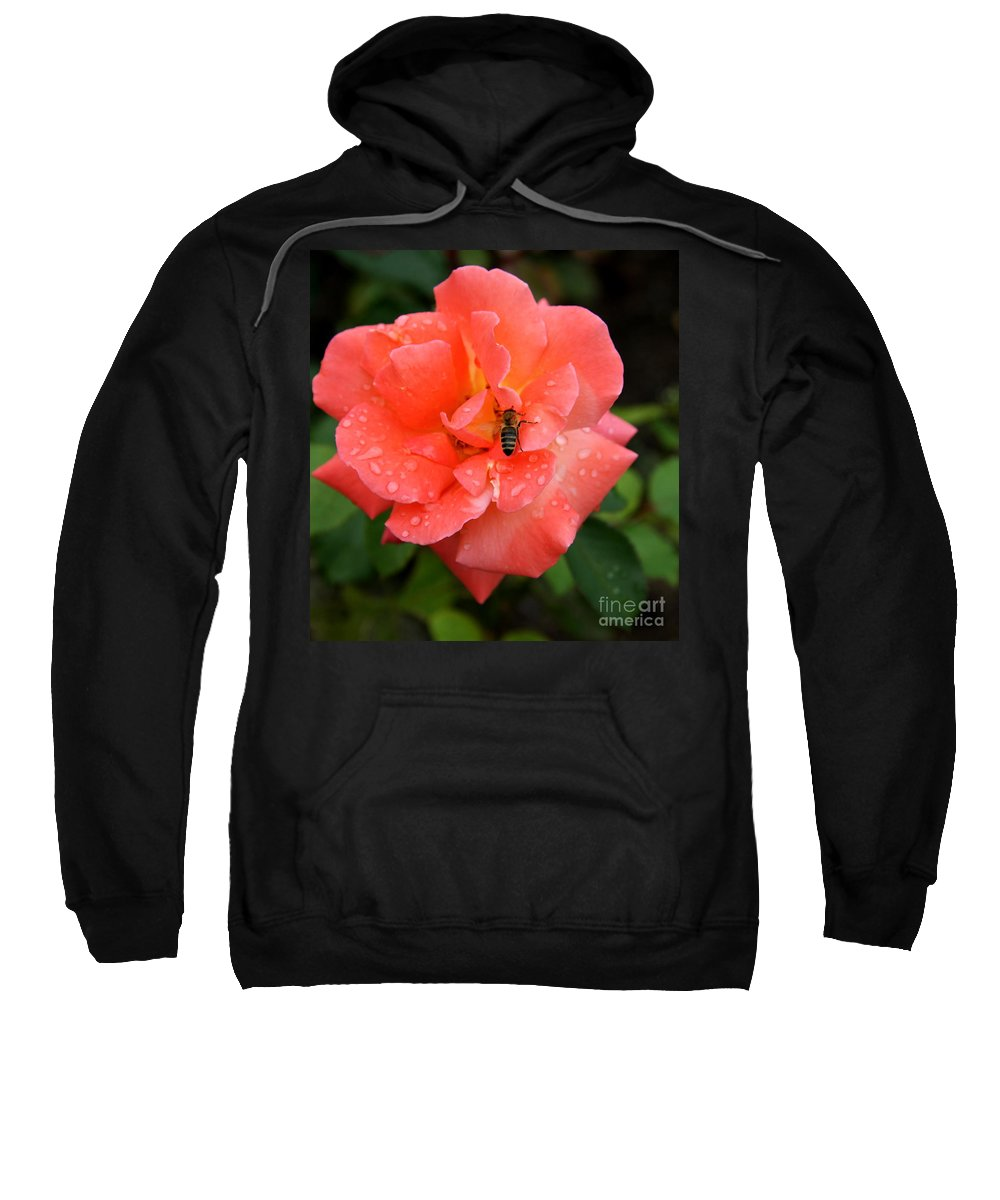 Rose Sweatshirt featuring the photograph Teardrops And Bee by Christiane Schulze Art And Photography