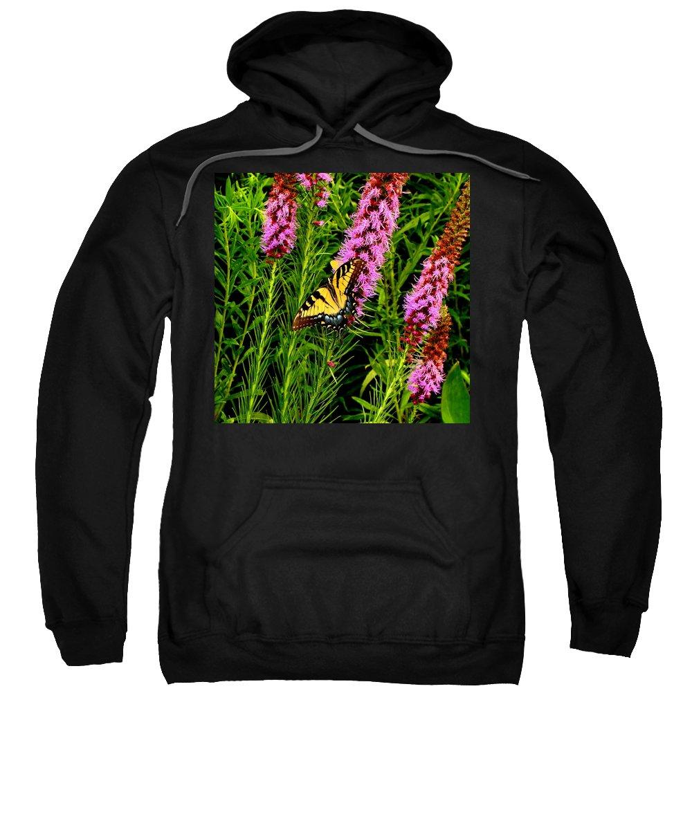 Fine Art Sweatshirt featuring the photograph Technicolor by Rodney Lee Williams