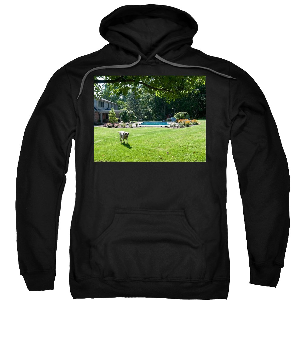 Sweatshirt featuring the photograph ten by Randall Branham