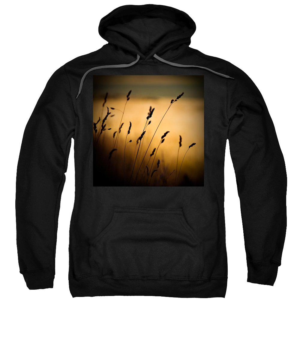 Filed At Sunset Sweatshirt featuring the photograph The Field by Dave Bowman