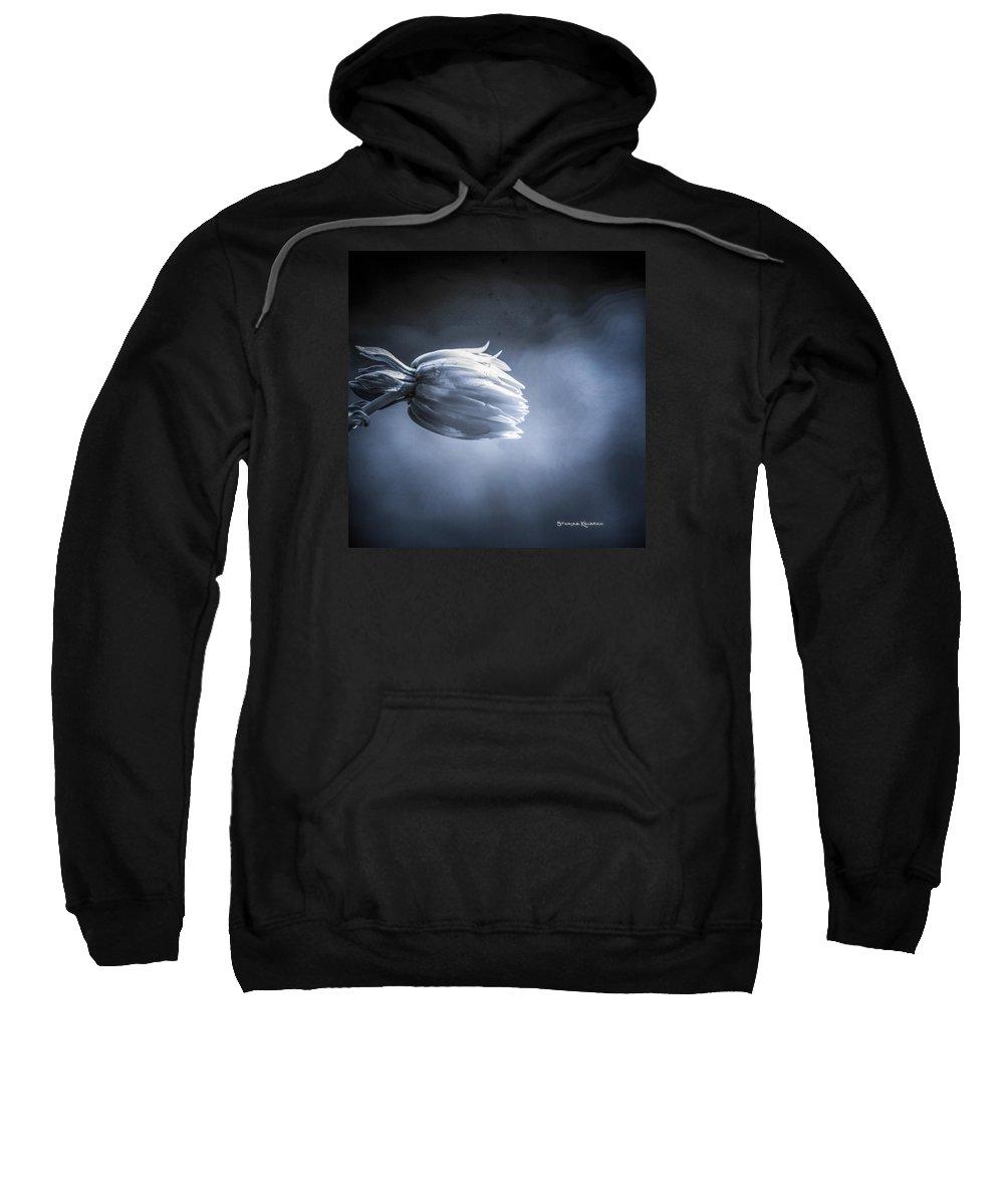 Flower Sweatshirt featuring the photograph The Frozen Ball by Stwayne Keubrick