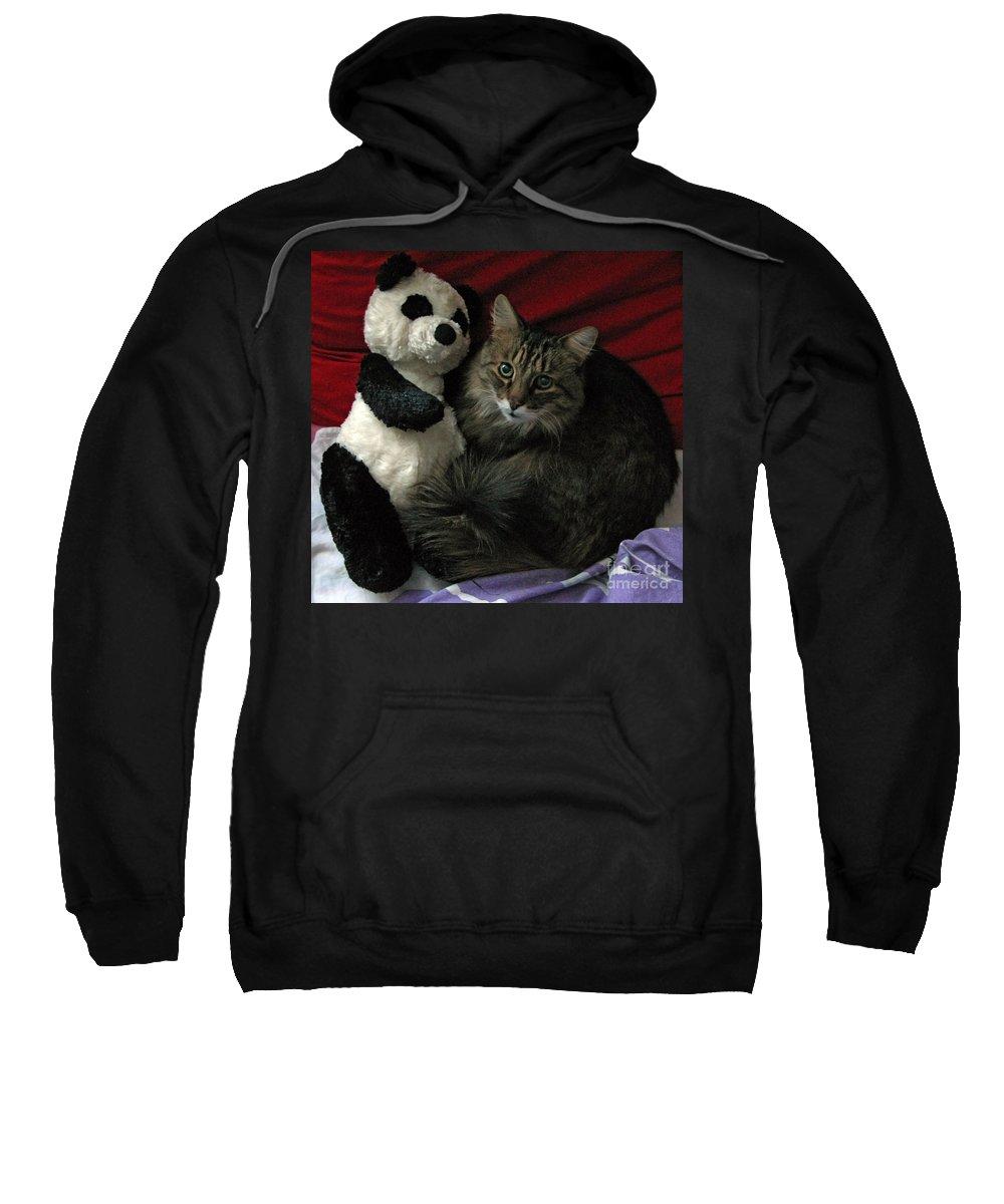 Pets Sweatshirt featuring the photograph The King Kitty And Panda 01 by Ausra Huntington nee Paulauskaite