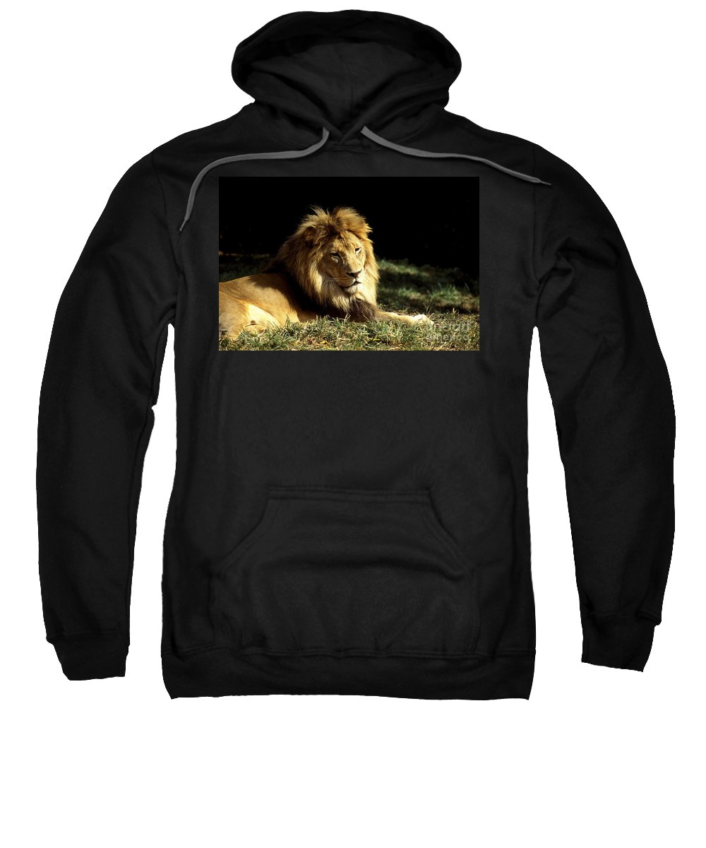 Male Lion Sweatshirt featuring the photograph The King by Paul W Faust - Impressions of Light