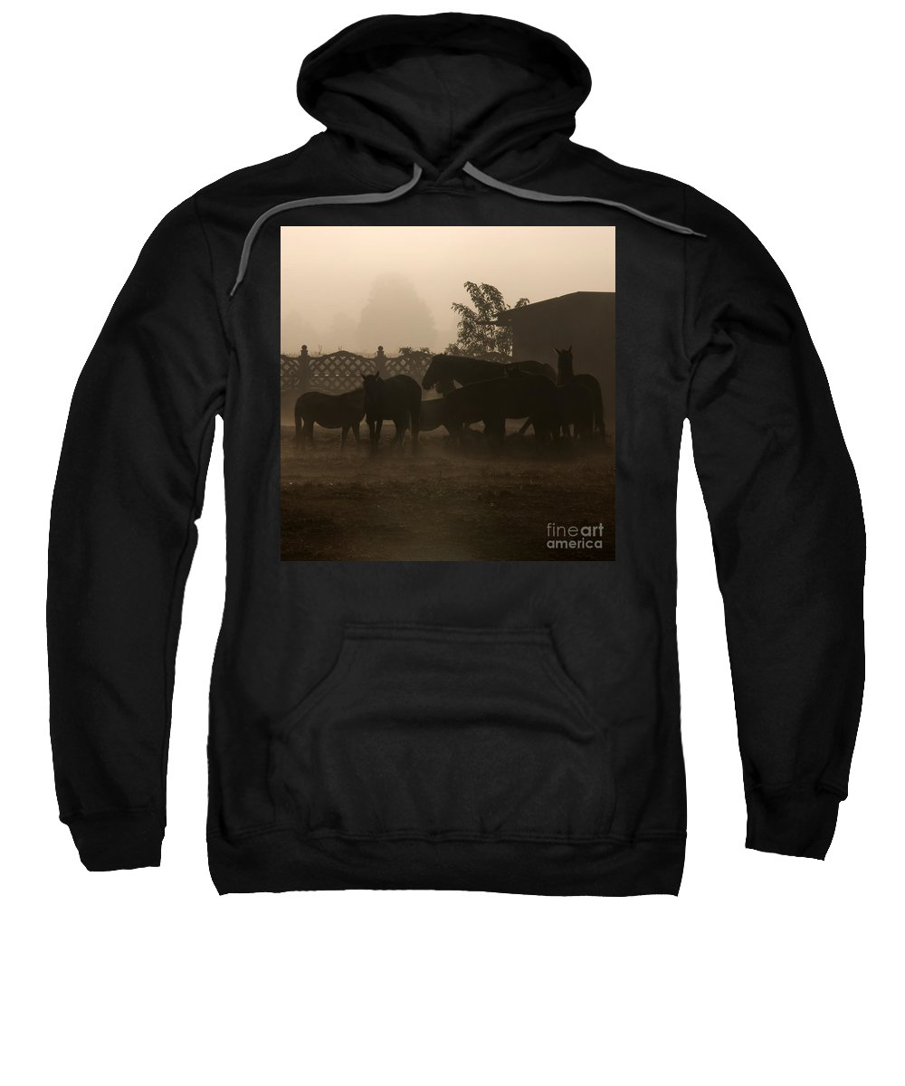 Misty Morning Sweatshirt featuring the photograph The Misty Morning by Angel Ciesniarska