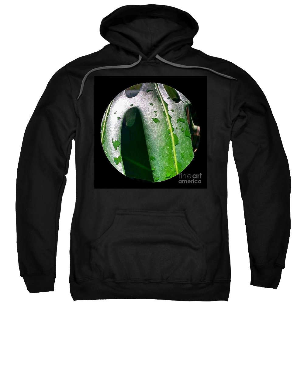 Plants Sweatshirt featuring the photograph The Pm Dew by Fei A