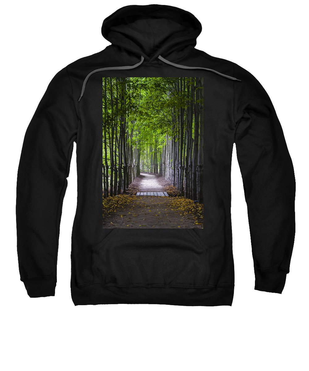 Hamilton Sweatshirt featuring the photograph The Red Maple Allee by Eduard Moldoveanu