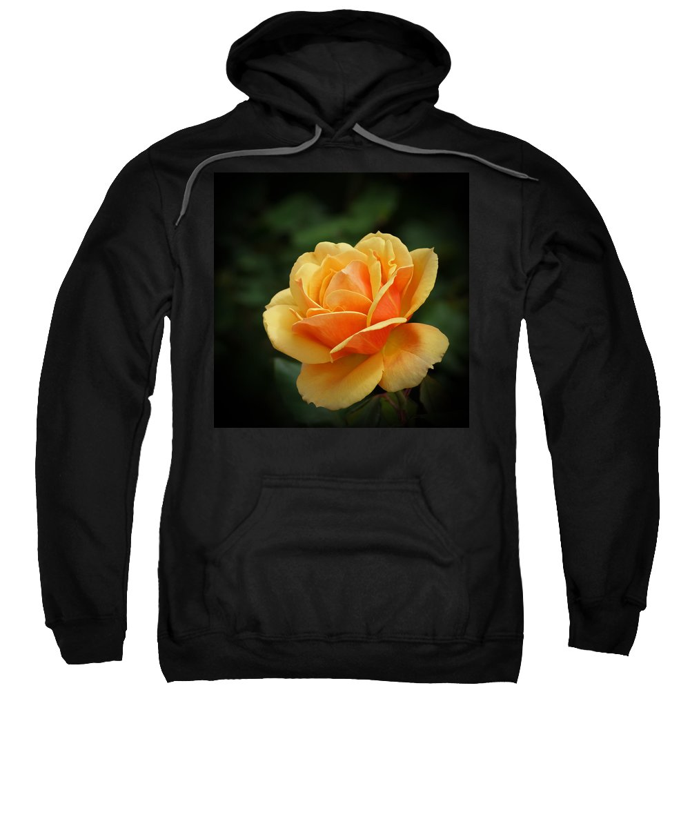 Beautiful Sweatshirt featuring the photograph The Rose 1 by Ernie Echols