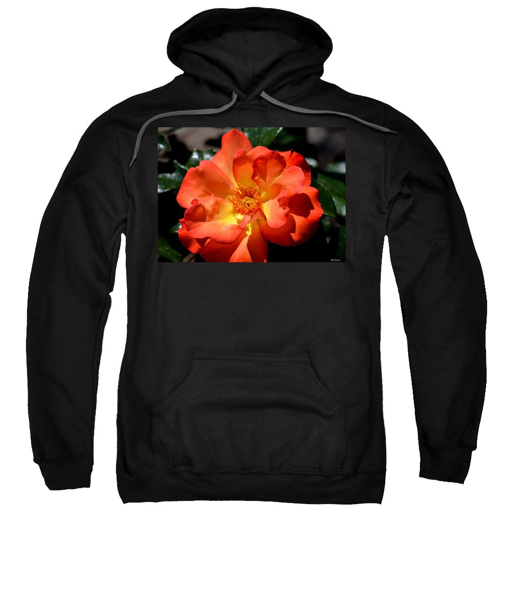 The Rose Of Joy Sweatshirt featuring the photograph The Rose Of Joy by Maria Urso