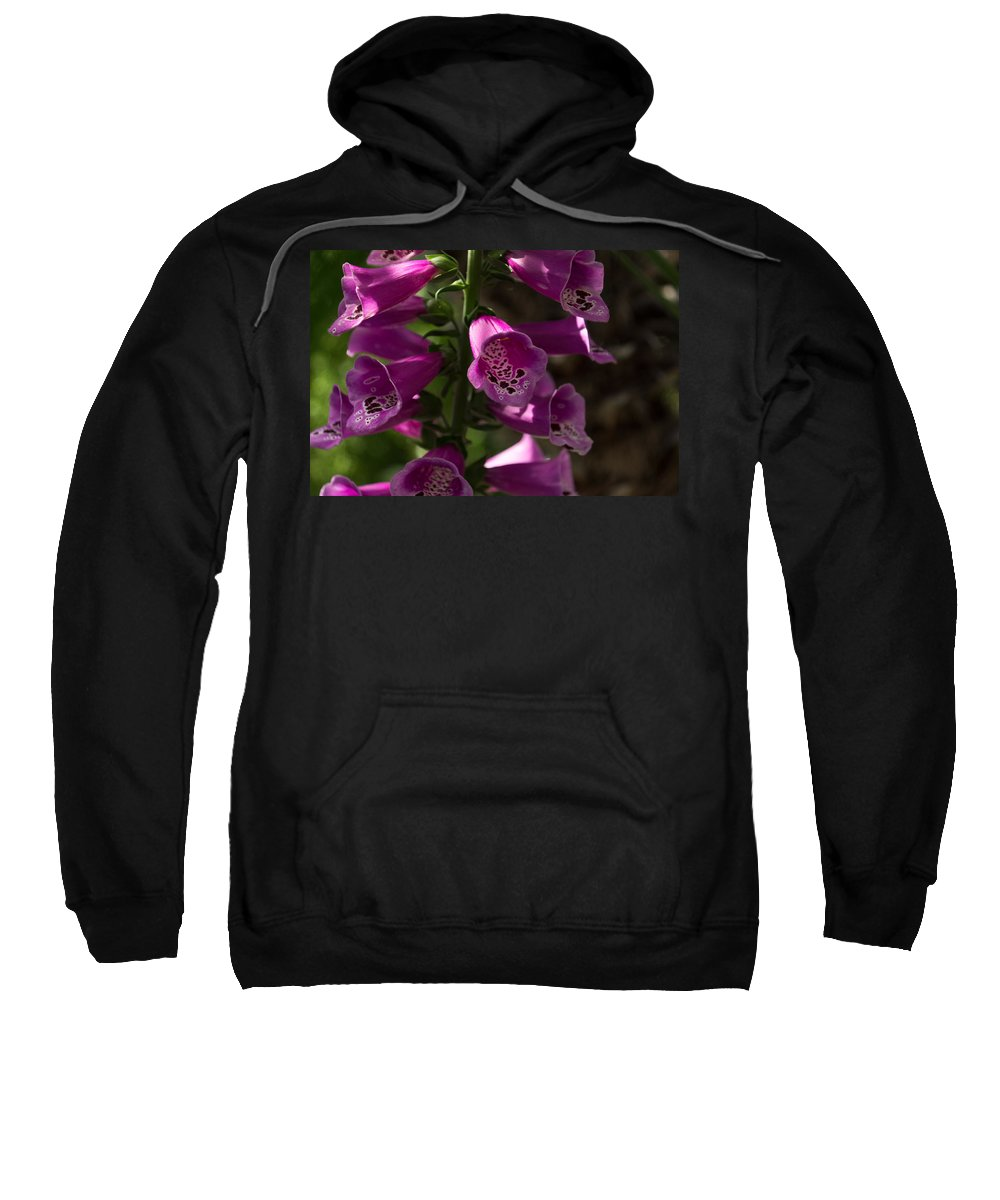 Splendor Sweatshirt featuring the photograph The Splendor Of Foxgloves by Georgia Mizuleva