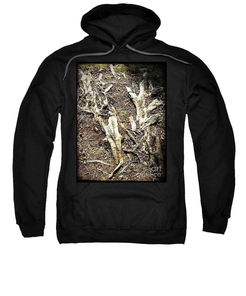 Tree Sweatshirt featuring the photograph The Static State Induction by Fei A