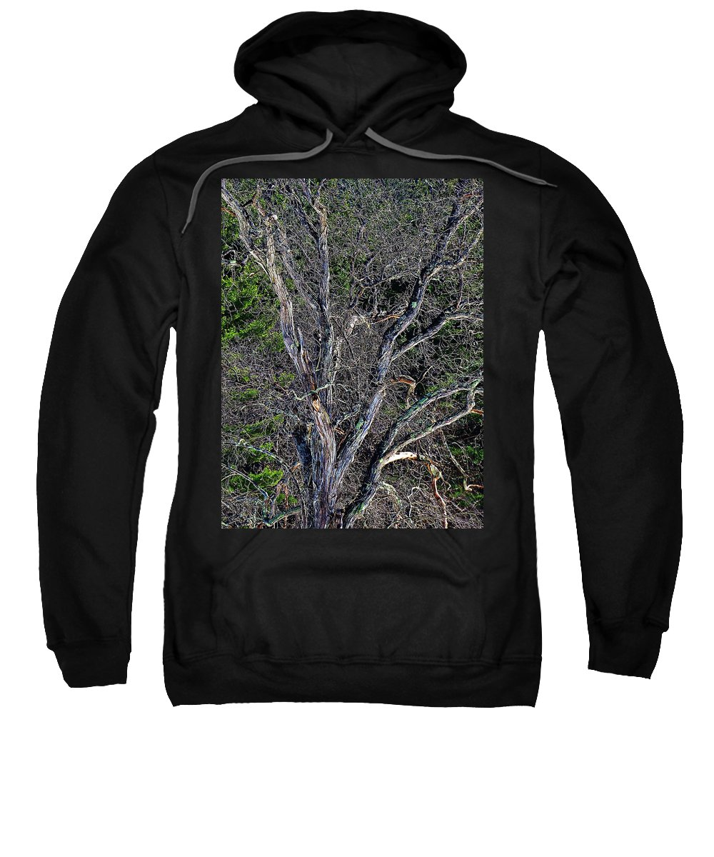 Sweatshirt featuring the photograph The Tree by MTBobbins Photography