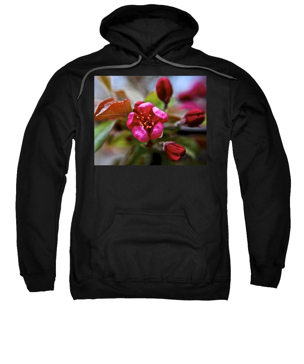 Time Sweatshirt featuring the photograph Through Time And Space by Frozen in Time Fine Art Photography