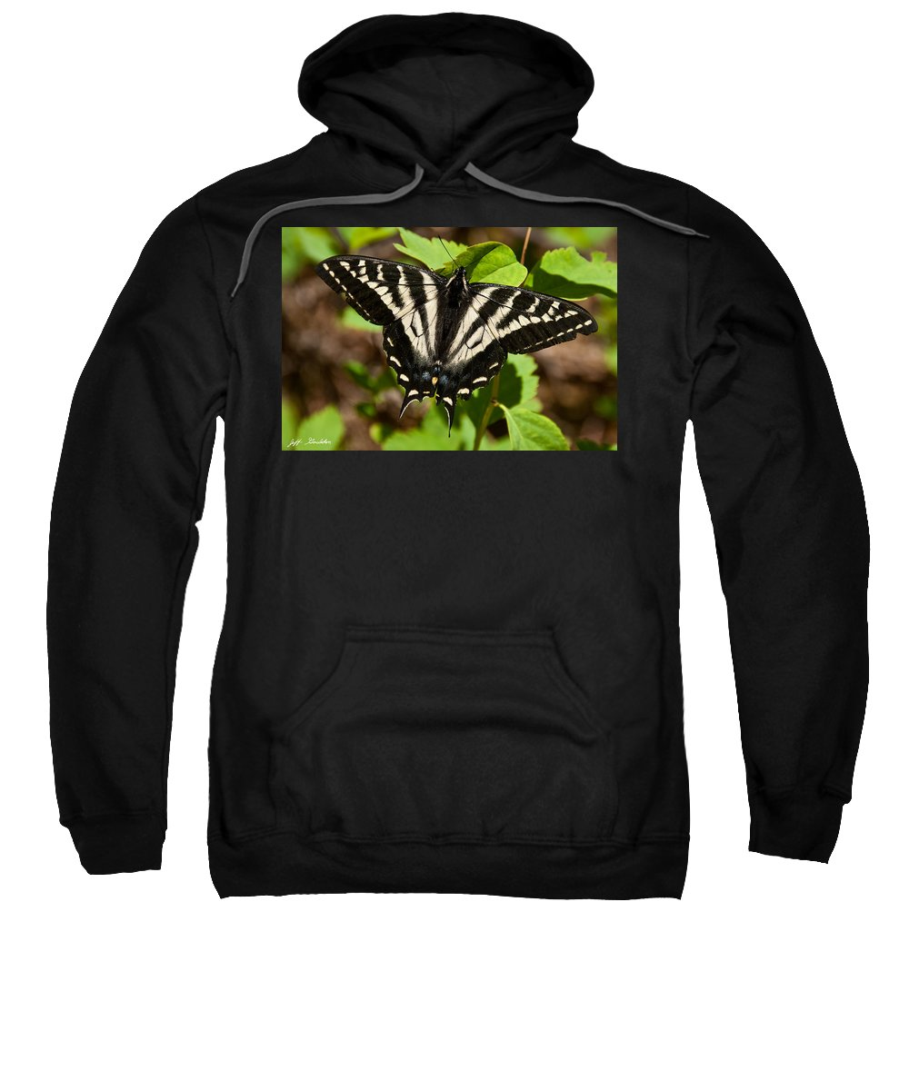 Animal Sweatshirt featuring the photograph Tiger Swallowtail Butterfly by Jeff Goulden