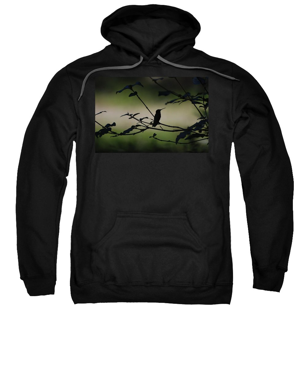 Nature Sweatshirt featuring the photograph Tranquility by Amy Porter