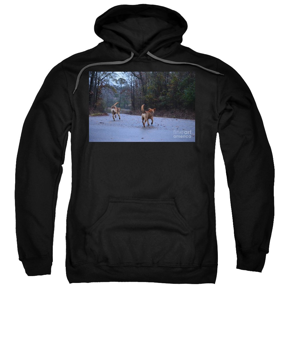 Traveling Twins Sweatshirt featuring the photograph Traveling Twins by Maria Urso