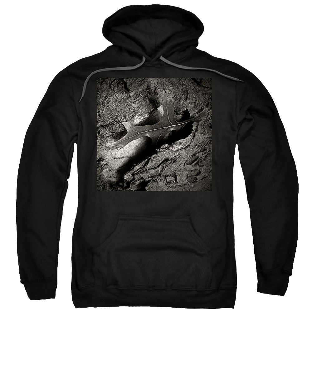 Nature Sweatshirt featuring the photograph Tree Bark And Leaf by Chris Berry