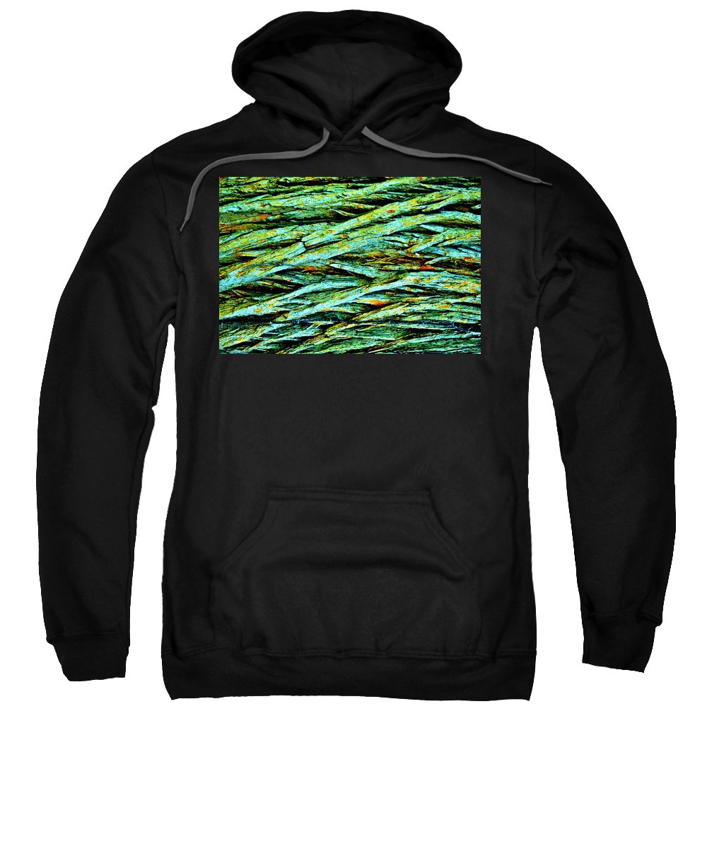Tree Sweatshirt featuring the photograph Tree Derma by Michelle McPhillips